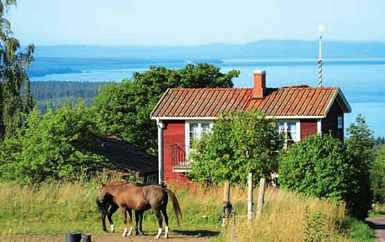 schweden reisen mit schwedenpur treffpunkt. Black Bedroom Furniture Sets. Home Design Ideas